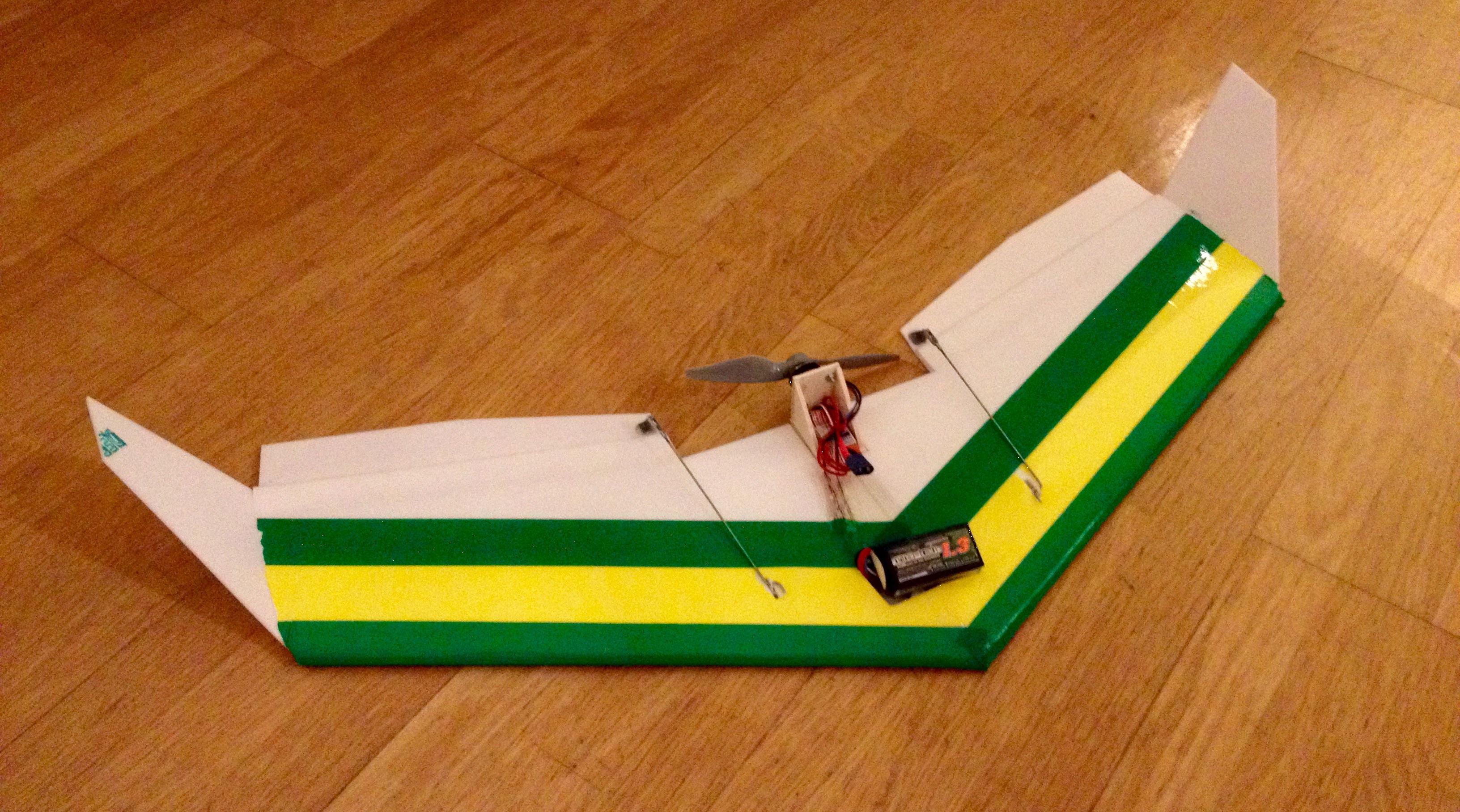 """I built a """"Dizzy Bird"""""""